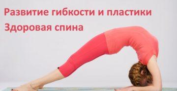 Растяжка и упражнения для спины и позвоночника