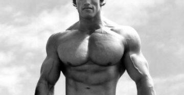 мышцы сила спорт